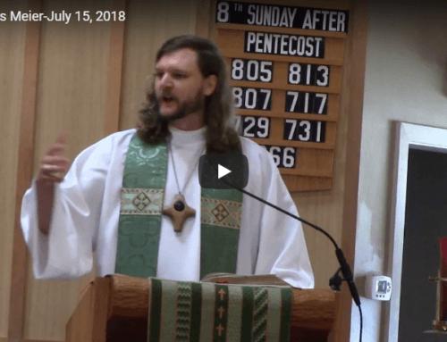 Sermon – July 15