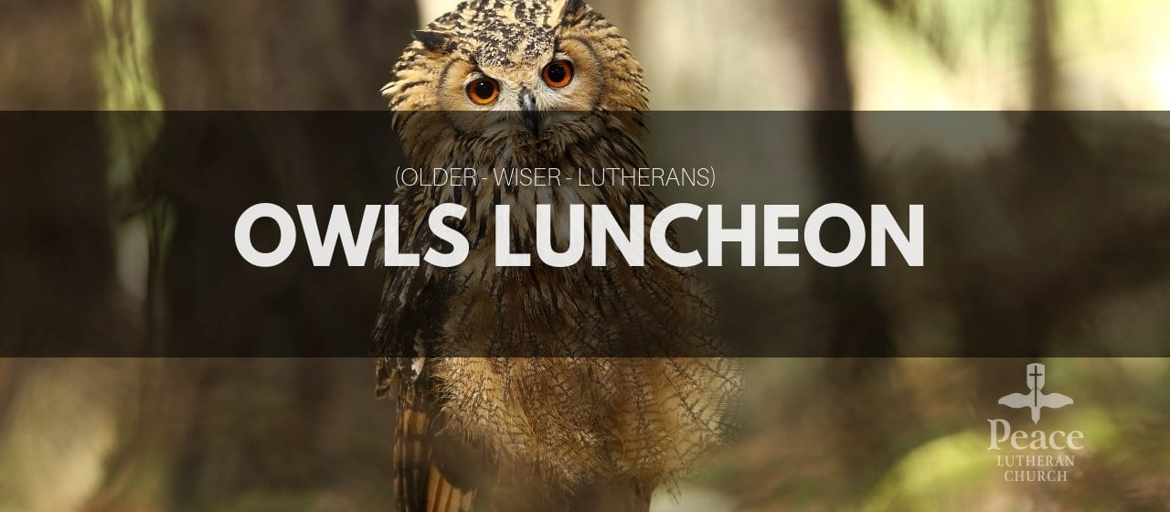 OWLS Luncheon