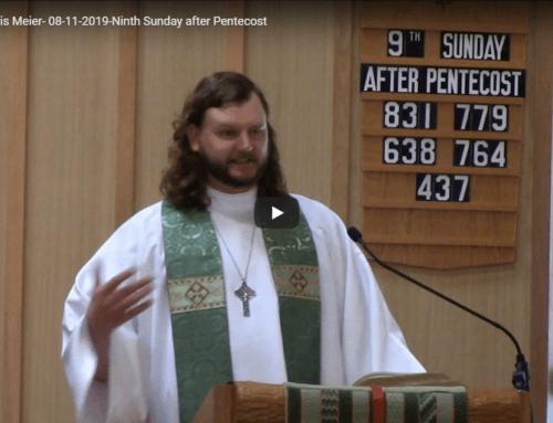 Sermon – August 11