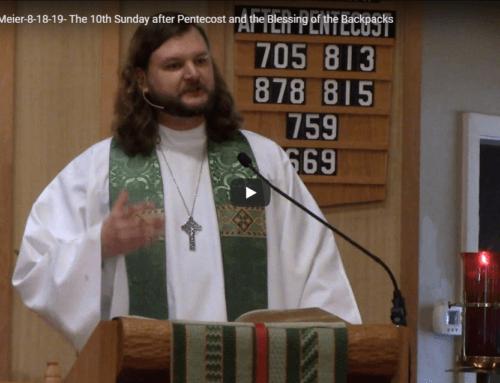 Sermon – August 18