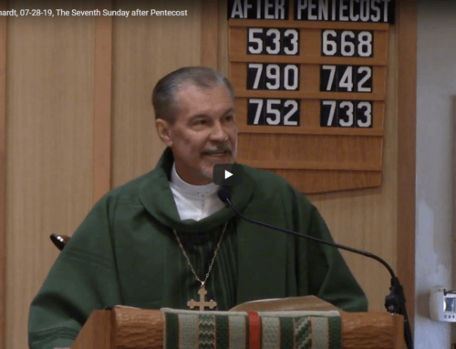 Sermon – July 28
