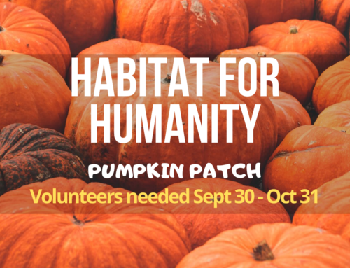 Habitat for Humanity Pumpkin Patch 2019