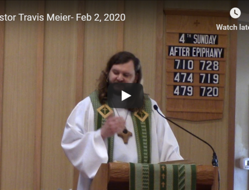Sermon – February 2