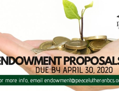 Endowment Committee Grant Proposals 2020