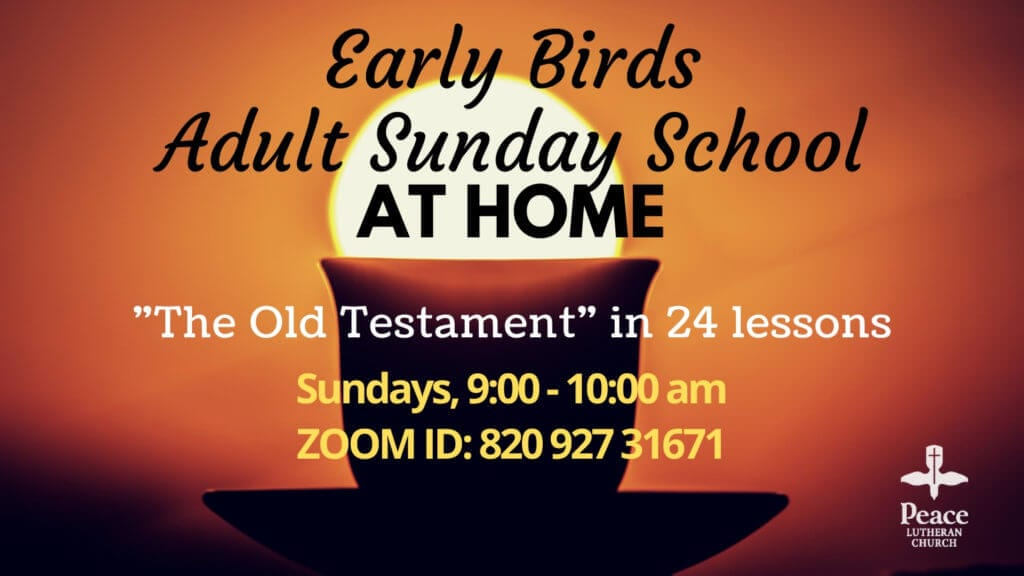 Early Birds Adult Sunday (Virtual)
