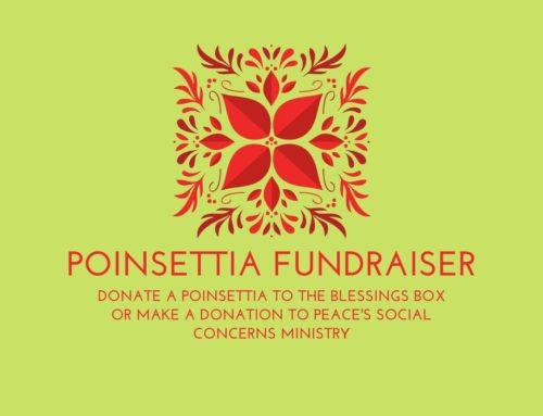 Christmas Poinsettia Fundraiser 2020