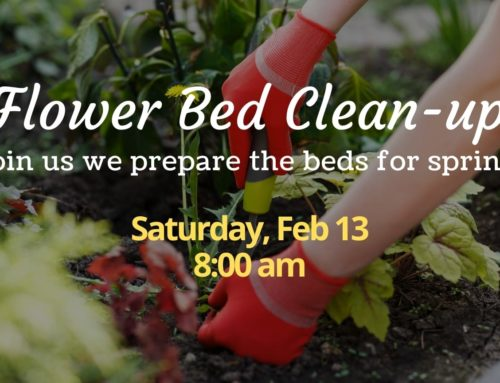 Flower Bed Clean-up – Spring 2021