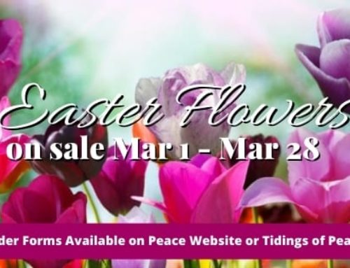 Easter Lilies and Flowers – 2021