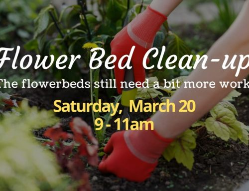 Flower Bed Clean Up – Round 2